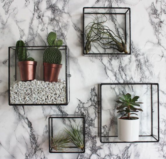 Bathroom Plants inspiration